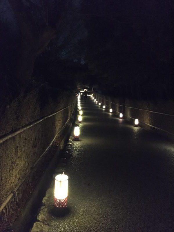 亀山公園 灯籠が続く小径